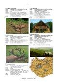 ROTHIRSCH 2012 - Seite 3
