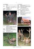ROTHIRSCH 2012 - Seite 4