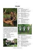 ROTHIRSCH 2012 - Seite 6