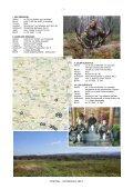 ROTHIRSCH 2012 - Seite 7