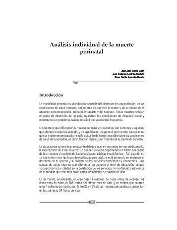 libro modelos para el análisis de la mortalidad materna ... - Inicio