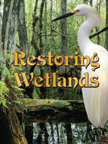 Restoring Wetlands - Rourke Publishing eBook Delivery System