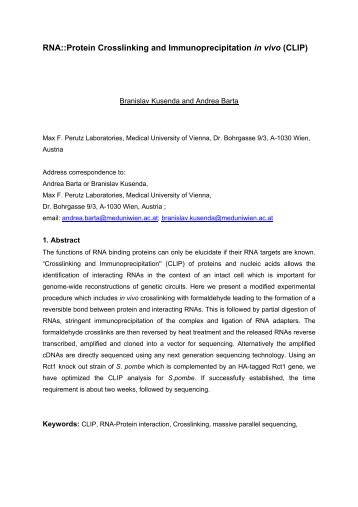 RNA: Protein crosslinking and immunoprecipitation in ... - EURASNET