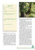 Karta pracy - Page 3