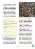 Karta pracy - Page 5