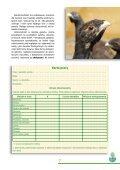 Karta pracy - Page 7