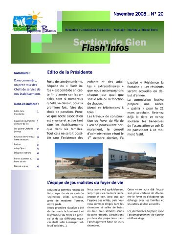 bulletin Novembre 2008 - Adapei