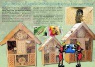 Dekorative und biologische Schädlingsbekämpfung in Ihrem Garten!