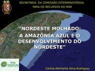 nordeste molhado: a amazônia azul eo desenvolvimento ... - Sudene