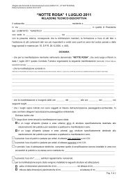 relazione_tecnico-descrittiva notte rosa per comitati ... - Rimini Turismo
