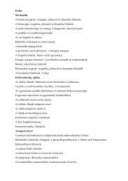Fizika Mechanika A haladó mozgások vizsgálata, jellemzői és ...