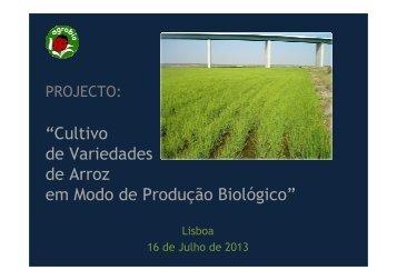 Projeto Arroz Biológico - spea.pt
