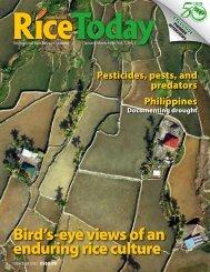 Rice Today - adron.sr
