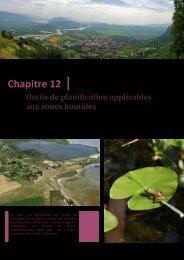 Protection et gestion des zones humides - L'eau dans le bassin de ...