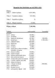 Schválený rozpočet 2010 - Kobylnice