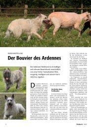 Unsere Autorin - Bouvier des Ardennes