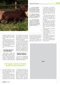Unsere Autorin - Bouvier des Ardennes - Seite 2