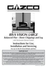 Riva Vision (Balanced Flue) - The Fire Basket