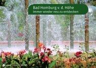 Bad Homburg v. d. Höhe - Homesitting Taunus