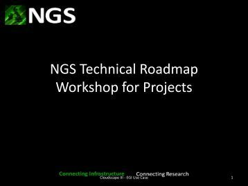 Services - National Grid Service (NGS)