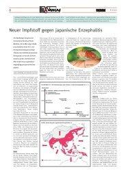 Neuer Impfstoff gegen japanische Enzephalitis