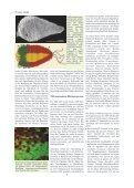 Sonderband 25Jahre.pdf - VAAM - Seite 6