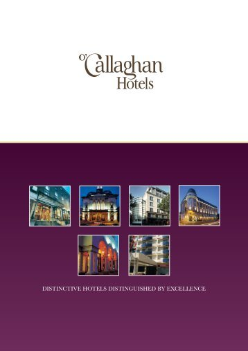 O'CH Group Brochure - Dublin Chamber of Commerce