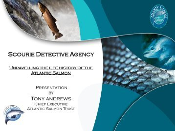 Presentation to Detective Agency Scourie by Tony Andrews, April ...
