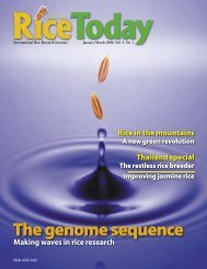 The genome sequence - International Rice Research Institute