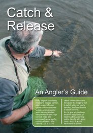 Catch and Release Leaflet 4pp A5.cdr - Salmon & Trout Association