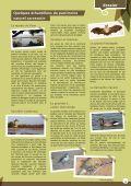 LE PATRIMOINE - Sarzeau - Page 2