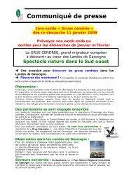 Grues cendrée - Ecotourisme dans les Landes de Gascogne