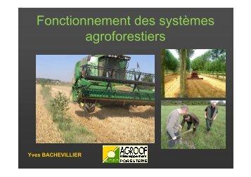 Fonctionnement des systèmes agroforestiers
