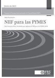 Guía para Micro Entidades que apliquen la NIIF para las PYMES