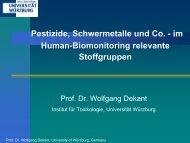 im Human-Biomonitoring relevante Stoffgruppen