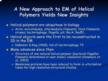 Intrinsic Disorder in Helical Polymers - Situs