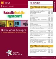 Nuova, Vicina, Ecologica. - Ama