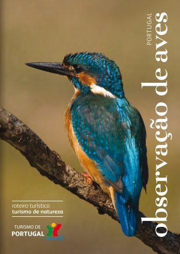 Observação de aves: Portugal - turismodeportugal.pt
