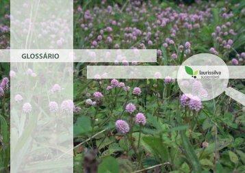 GLOSSÁRIO - Uma floresta, um futuro