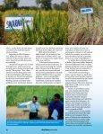 """Scuba rice"" - adron.sr - Page 6"