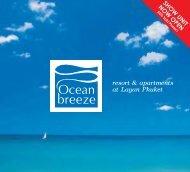 Brochure PDF - Asia Island Homes