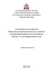 análise dos financiamentos operacionalizados pelo banco da ...