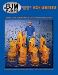 KZN-Series - BJM Pumps
