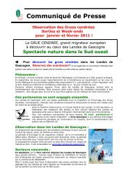 hiver 2010 – 2011 - Ecotourisme dans les Landes de Gascogne