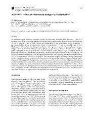 A review of studies on Pichavaram mangrove, southeast India