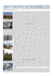 information - Olive Branch Tours