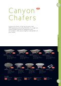 Canyon Chafers - Page 2