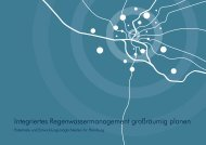 Kruse Integriertes Regenwassermanagement 10 ... - Projekt RISA