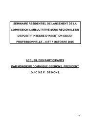 Intervention de Dominique GEEROMS - CSEF Mons