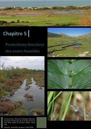 Protection foncière des zones humides - Pôle-relais lagunes ...